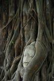 forntida buddhismhuvud Royaltyfri Foto