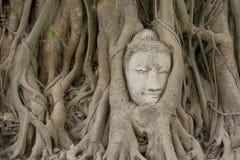 forntida buddhismhuvud Royaltyfria Foton