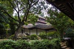 Forntida byggnader och bambu fotografering för bildbyråer