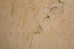 Forntida cementvägg Royaltyfria Bilder