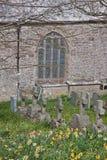 forntida churchyard arkivbild