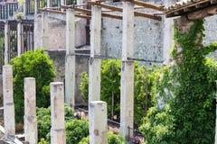 Forntida citronlantgård Arkivfoton