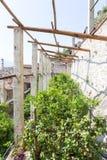 Forntida citronlantgård Royaltyfri Foto