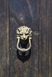 Forntida detalj för bronsdörrknackare av trädörren Royaltyfri Fotografi
