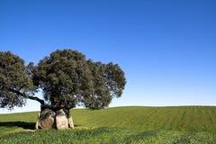 forntida dolmen Fotografering för Bildbyråer