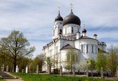 Forntida domkyrka i Lomonosov (Oranienbaum), Ryssland Royaltyfria Foton