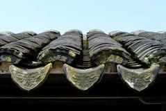 Forntida eaves Fotografering för Bildbyråer