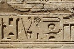 Forntida egypt hieroglyphs Fotografering för Bildbyråer