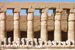 forntida egypt luxor statytempel Arkivbild