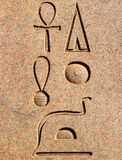 forntida egyptisk hieroglyphicsstående Royaltyfria Bilder