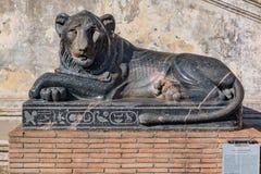 Forntida egyptisk skulptur av lejonet av Nectanebo på Vaticanen M Arkivfoton