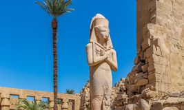 Forntida egyptisk tempel Amon Ra i Luxor med kolonner och härliga basreliefpharaohs kult royaltyfria bilder