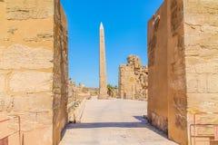 Forntida egyptisk tempel Amon Ra i Luxor med kolonner och härliga basreliefpharaohs kult royaltyfri foto