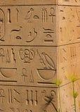 forntida egyptiska hieroglyphics Arkivbild