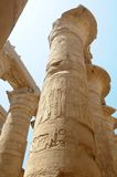 forntida egyptiska pelare Royaltyfri Fotografi