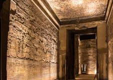 Forntida egyptiska väggcarvings - Luxor tempel Royaltyfria Bilder