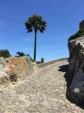 Forntida fästning i berg Arkivbild