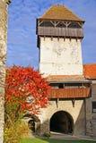forntida fästning transylvania Arkivbilder