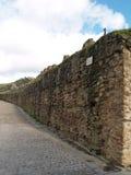 forntida fästningvägg Royaltyfri Fotografi