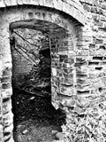 Forntida fördärva Konstnärlig blick i svartvitt Arkivbild