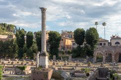 Forntida fördärvar av basilikan Julia royaltyfria bilder