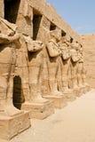 Forntida fördärvar av det Karnak tempelet i Egypten Arkivbild