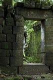 Forntida fördärvar djupt i en skog Royaltyfri Foto