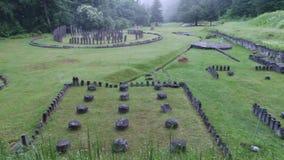 Forntida fördärvar i skog lager videofilmer