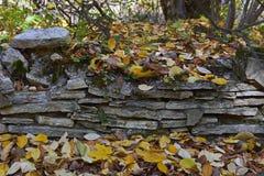 Forntida fundament av en forntida byggnad Fotografering för Bildbyråer