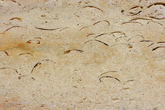 forntida granit Arkivfoton
