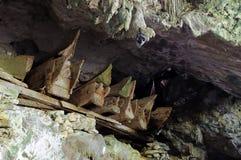 Forntida gravvalv i grottor i Indonesien Royaltyfria Foton