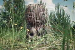 Forntida gud av jord och fertilitet Pachamama arkivfoton
