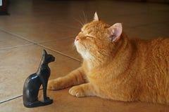 Forntida gudar, katt i solljus med statyn av gudinnan Bastet royaltyfri foto