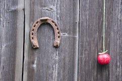 Forntida hästsko och rött äpple på den gamla träladugårdväggen Royaltyfri Foto