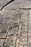 Forntida handstil Arkivfoto