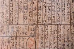 Forntida hieroglyf på papyrusdetaljen Arkivfoto