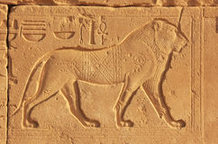 Forntida hieroglyfer på väggarna av det Karnak tempelkomplexet, Lux Royaltyfri Foto