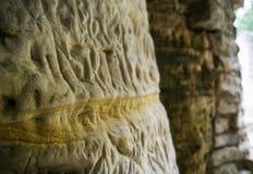 Forntida hieroglyfiska carvings på den sandiga väggen Royaltyfri Bild