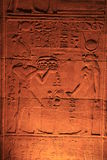 Forntida hieroglyphics Royaltyfri Bild