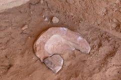 Forntida indian Metate Royaltyfri Fotografi