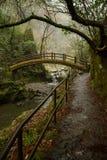 Forntida japansk stenbro över ström i skog Royaltyfria Foton