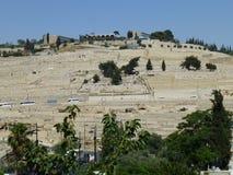Forntida judisk kyrkogård på monteringen av olivgrön royaltyfria foton
