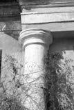 Forntida kolonncloseup/svartvitt foto Arkivfoton