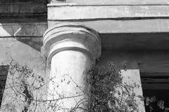 Forntida kolonncloseup/svartvitt foto Arkivfoto