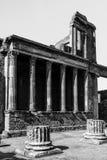 forntida kolonner Royaltyfri Bild