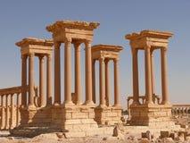 forntida kolonnpalmyra syria Arkivfoto
