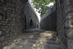 Forntida korridor på slottegenskap Royaltyfri Fotografi