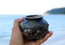 Forntida krukmakeri med havsskalet på stranden Royaltyfria Bilder