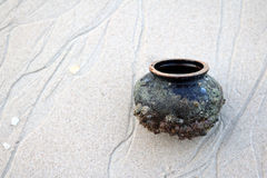 Forntida krukmakeri med havsskalet på stranden Arkivbilder