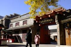 Forntida kulturgata i Tianjin, Kina Royaltyfria Foton
